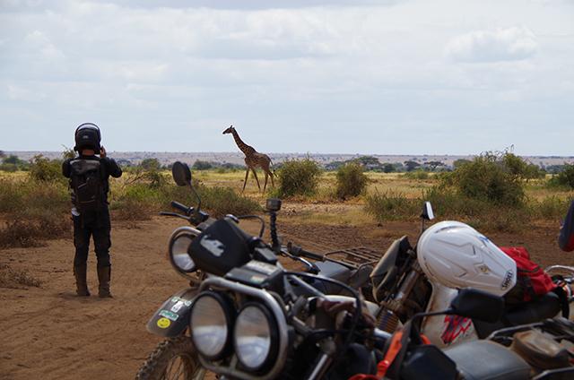ケニア オフロード9日間 添乗レポート(その2)