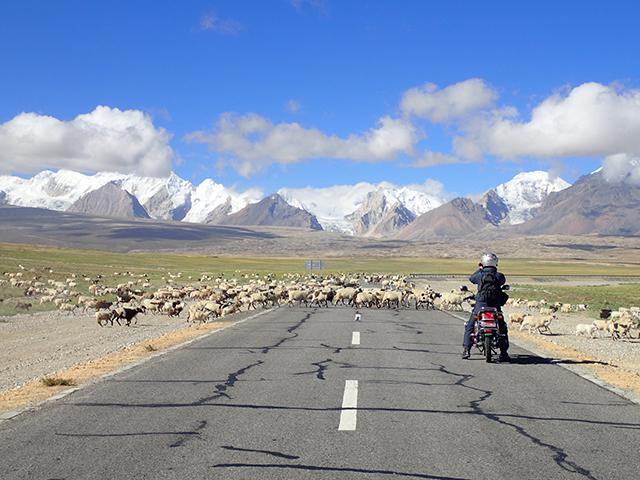 チベット 聖山カイラス巡礼ヒマラヤ横断12日間 添乗レポート(前編)