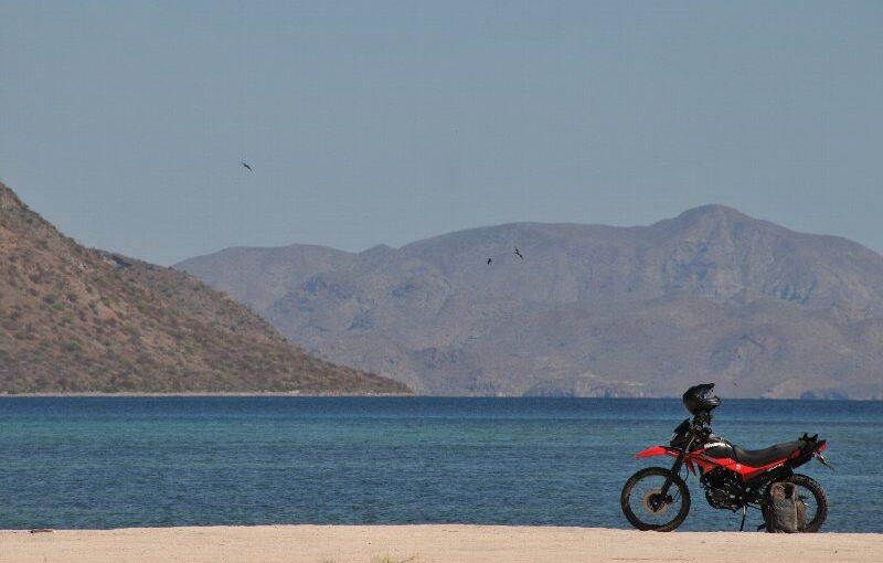 メキシコ バハ・カリフォルニア半島縦断ツーリング 添乗レポート(最終回)